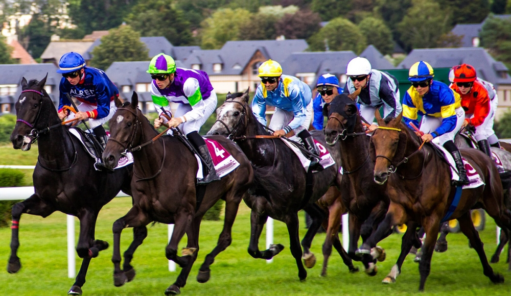 Leopardstown Racing